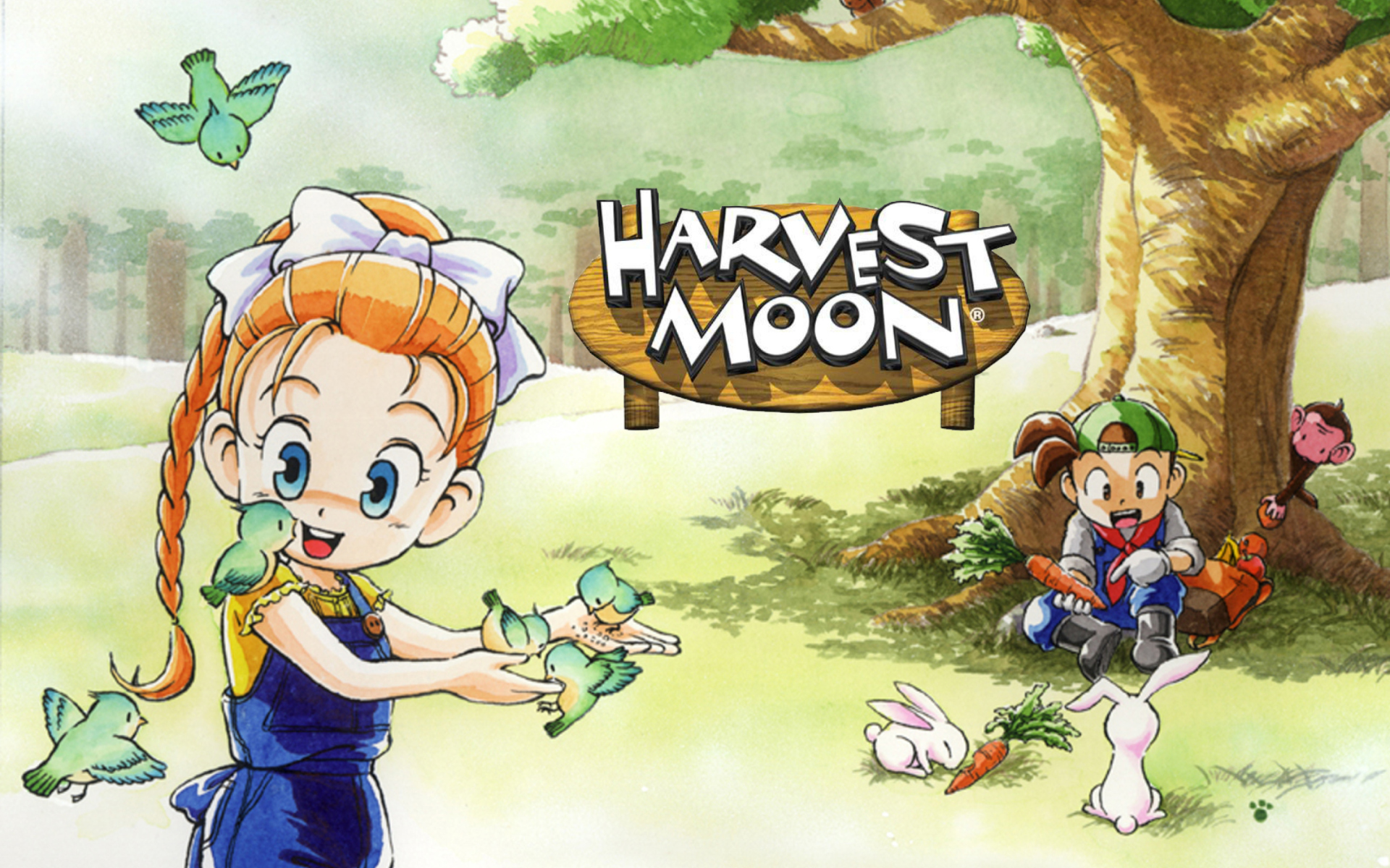 Harvest Moon: Mad Dash выйдет на Switch
