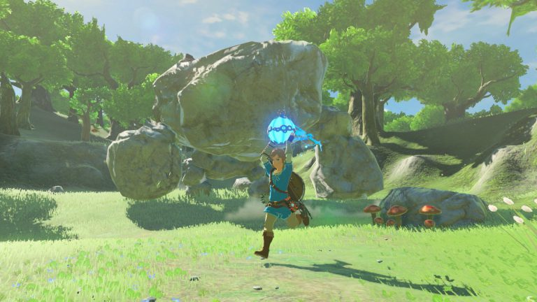 Игрок прошёл Breath of the Wild используя только щит
